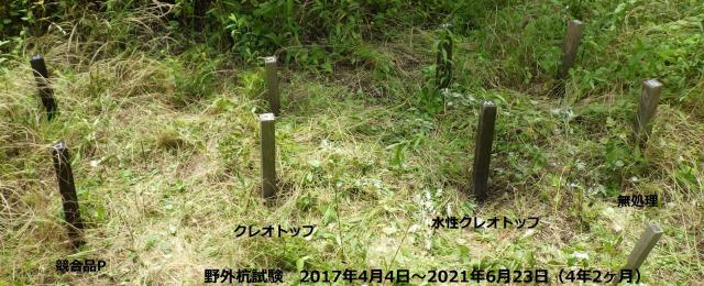 木材防腐剤野外杭試験4年2ヶ月経過!